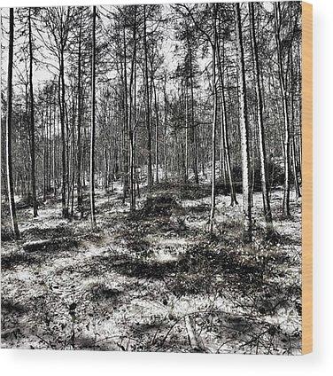 Landscapehunter Wood Prints
