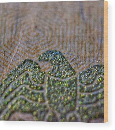 Money Wood Prints