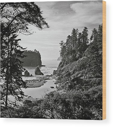 Olympic National Park Wood Prints