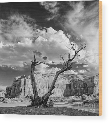 Monument Valley Navajo Tribal Park Wood Prints