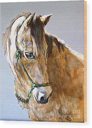 Morgan Horse Wood Prints