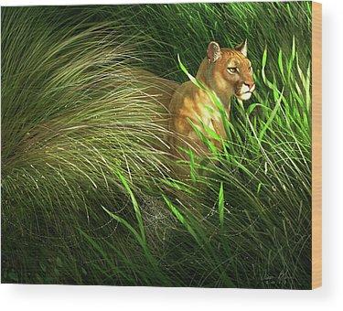 Florida Panther Wood Prints