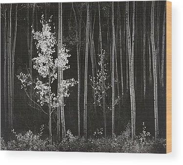 Ansel Adams Wood Prints