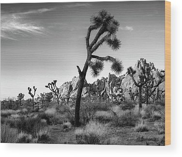 Joshua Tree National Park Wood Prints