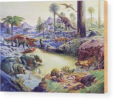 Placerias Wood Prints
