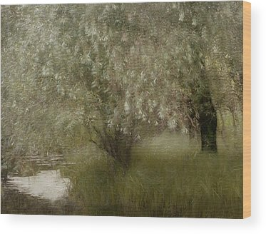 Riverside Wood Prints