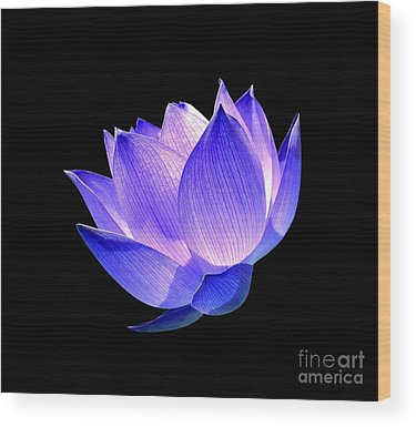 Lotus Wood Prints
