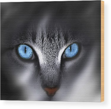 Blue Eyes Wood Prints