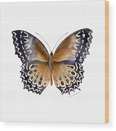 Moth Wood Prints