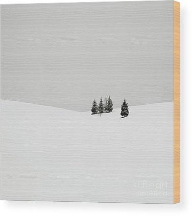 Pine Barrens Wood Prints
