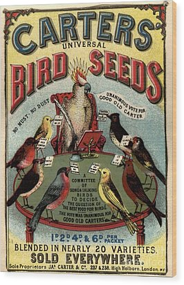 1890s Uk Carters Bird Seed Birds Wood Print by The Advertising Archives