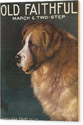 1910s Usa Old Faithful Dogs Wood Print by The Advertising Archives