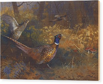 A Cock And Hen Pheasant At The Edge Of A Wood Wood Print by Archibald Thorburn