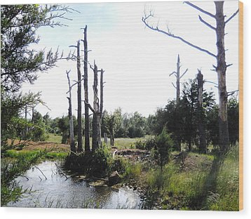 Wood Print featuring the photograph  A Little Slice Of Arkansas Beauty by Yolanda Raker