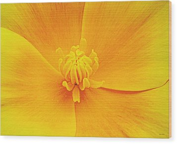A Study In Yellow- Centerpiece 003 Wood Print by George Bostian