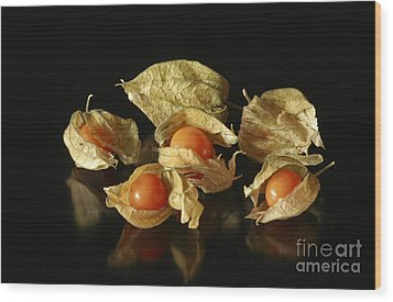 A Taste Of Columbia Physalis Aztec Golden Goose Berry  Wood Print by Inspired Nature Photography Fine Art Photography