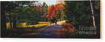 Wood Print featuring the photograph  Acadia National Park Carriage Trail Fall  by Tom Jelen