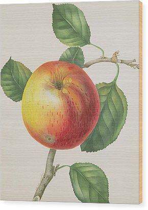 An Apple Wood Print by Elizabeth Jane Hill