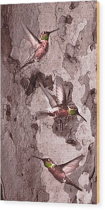 Wood Print featuring the digital art  Anna's Hummingbirds by Kandy Hurley