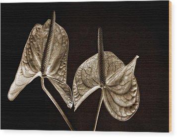 Anthurium 2 Wood Print by Thomas Born
