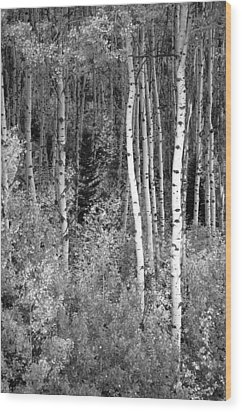 Wood Print featuring the photograph  Aspen Autumn  by Eric Rundle
