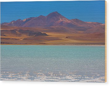 Atacama Salt Lake Wood Print