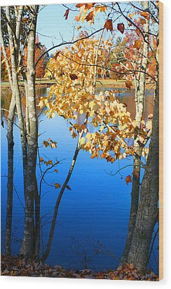 Autumn Trees On The Lake Wood Print by Lesa Fine