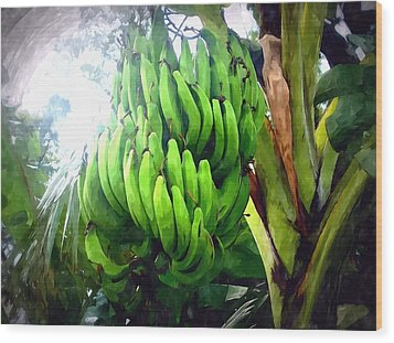 Banana Plants Wood Print by Lanjee Chee
