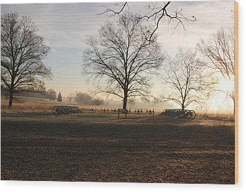 Battery Park Valley Forge National Park Wood Print