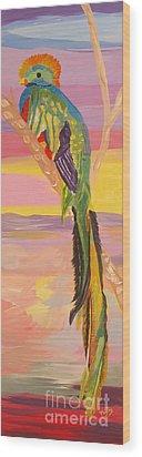 Beautiful Bird Quetzal Must Open  Wood Print by Phyllis Kaltenbach