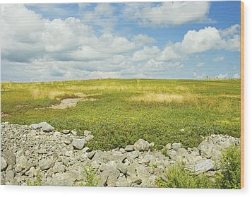 Blueberry Field With Blue Sky And Clouds In Maine Wood Print by Keith Webber Jr