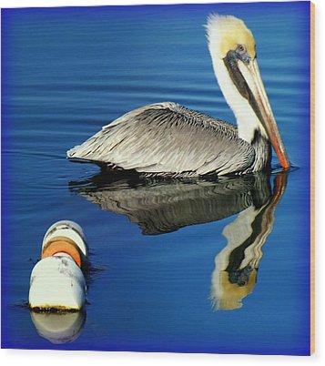 Blues Pelican Wood Print by Karen Wiles