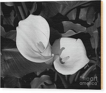 Calla Lilies Bw 1 Wood Print