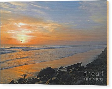 Carlsbad State Beach Wood Print by Everette McMahan jr