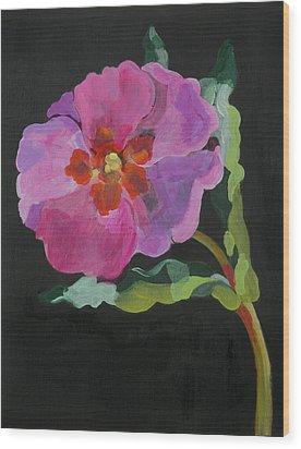 Cistus New Zealand Wood Print by Deborah Barton