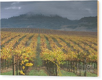 Clouds Over Alexander Valley Vineyard On A Fall Morning Wood Print by Gary Crabbe