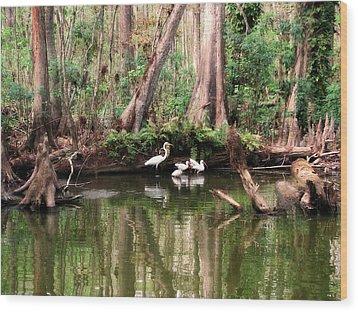 Cypress Swamp  Wood Print by Peg Urban