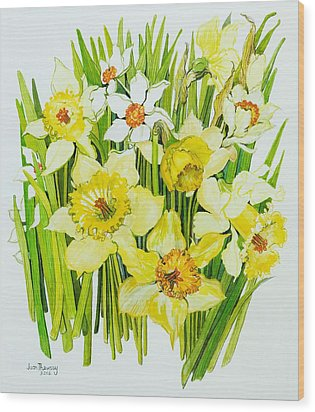 Daffodils And Narcissus Wood Print by Joan Thewsey
