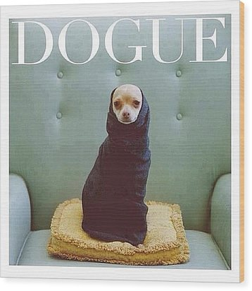 😂😂😂😂 #dogue #vogue Wood Print by Matheo Montes
