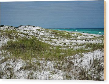 Wood Print featuring the photograph  Dunes    Panama City Beach  by Susan  McMenamin