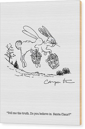 Easter Bunny Truth  Wood Print