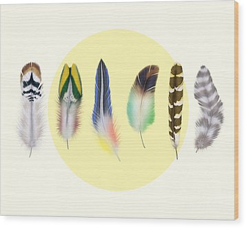 Feathers 2 Wood Print by Mark Ashkenazi