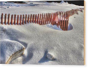 Fence Sculpture Wood Print