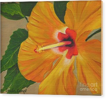 Golden Glow - Hibiscus Flower Wood Print by Shelia Kempf