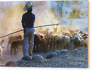 Herder Going Home In Mexico Wood Print by Phyllis Kaltenbach