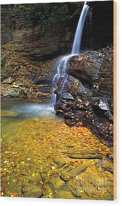 Holly River State Park Upper Falls Wood Print by Thomas R Fletcher
