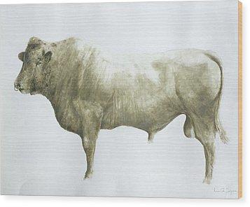 Islay Bull Wood Print by Lincoln Seligman