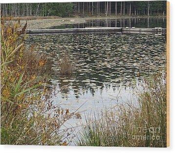 Lily Pads On Whonnock Lake Wood Print by Joyce Gebauer