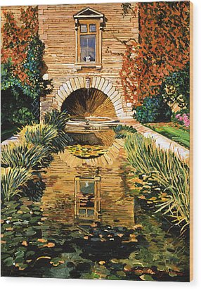 Lily Pond And Fountain Wood Print by David Lloyd Glover