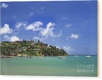 Naguabo Shoreline Wood Print by Thomas R Fletcher